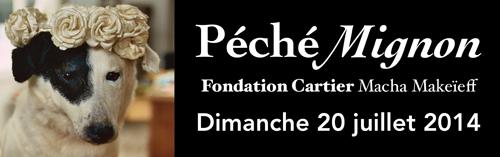pe_che_mignon_fondn_bande_chienweb.jpg
